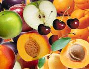 هسته کدام میوه ها سمی است و نباید بخوریم؟
