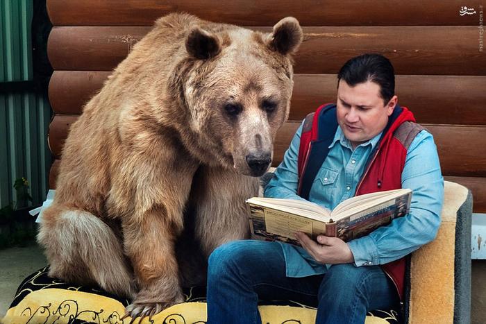 عکس های زن شوهر جوان که با خرس زندگی می کنند!