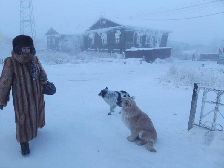 آیمیکون؛روسیه