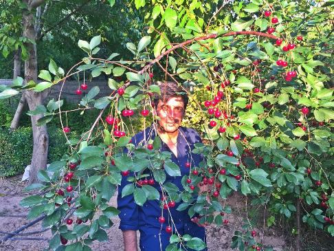 زندگی حمید گودرزی پس از طلاق از همسرش! (عکس)