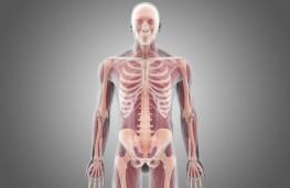 پیوند کامل بدن انسان بر روی سر انسان در چین!