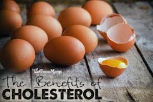 کلسترول بد LDL باعث پیشگیری در مقابل سرطان و آلزایمر می شود!