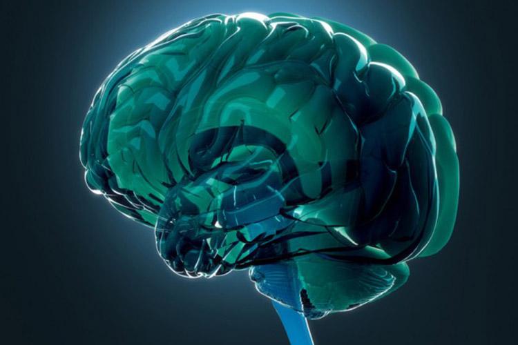 زندگی عادی مردی که 90 درصد مغزش نابود شده است! (عکس)