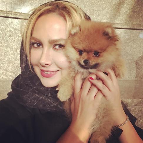 سگ آنا نعمتی