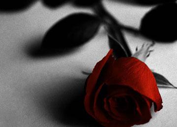 داستان زیبای غم انگیز عاشق شدن و خیانت ندا