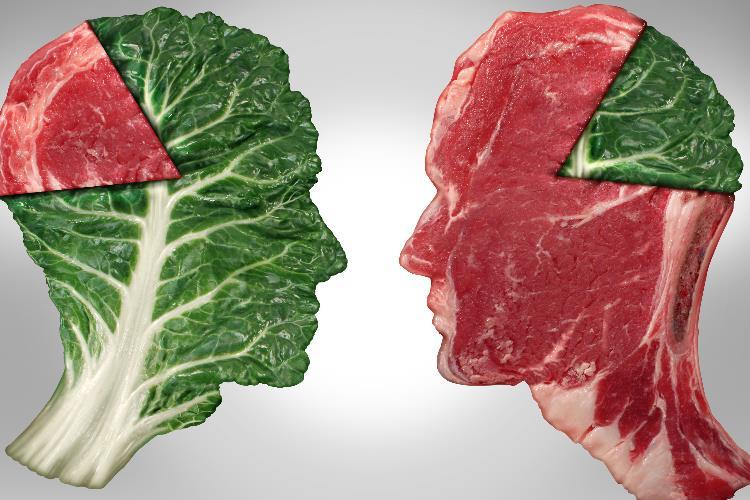 گوشت, مصرف گوشت, خواص گوشت, گوشت نخوردن