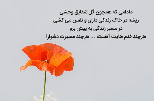 متن و جملات عاشقانه داغ روزهای تابستان + تصاویر نوشته دار رمانتیک