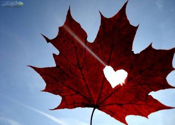 پیامک های احساسی پاییزی اس ام اس عاشقانه فصل پاییز