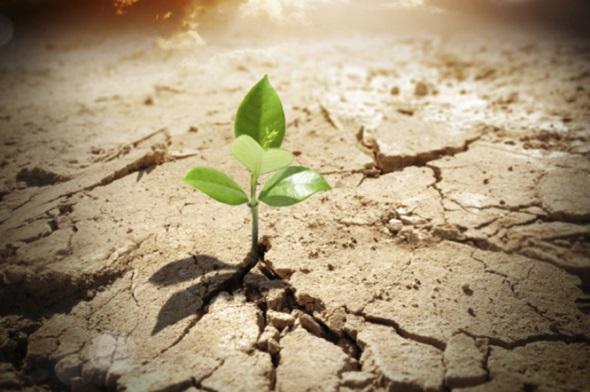 اثرات مفید امید و امیدواری بر زندگی افراد