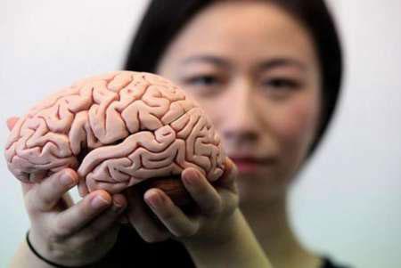 پیر شدن مغز