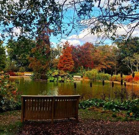 عکس های زیبای احساساتی از منظره های پاییزی زیبا