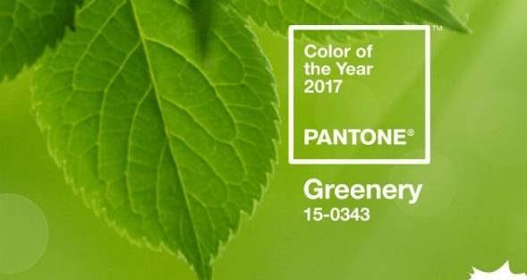 رنگ سال 2017 و سال 96 , عکسهای رنگ سبز سال 1396
