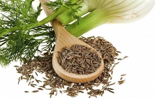معجزه گیاه رازیانه برای سلامت خانم ها