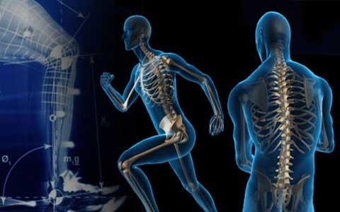 عوارض و اثرات یک هفته ورزش نکردن و پیاده روی نکردن برای بدن چیست؟