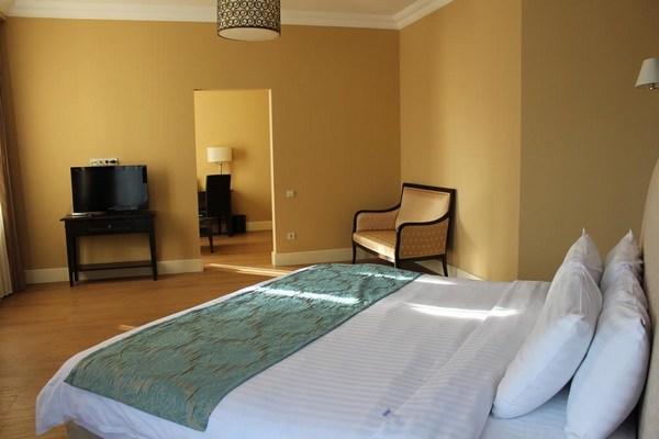 هتل پرزیدنت پلازا باتومی (President Plaza Hotel)