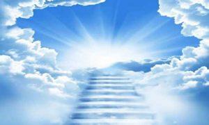 هر کسی که نماز می خواند و روزه می گیرد به بهشت می رود؟