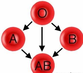 گروه خونی افراد موفق