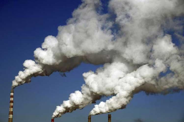 ویتامین های گروه ب B اثرات مخرب آلودگی هوای را از بین می برد
