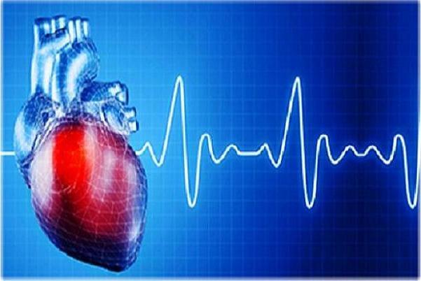 زنان قد بلند بیشتر به بیماری های قلبی دچار می شوند!