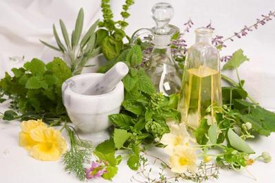گیاه دارویی افزایش وزن