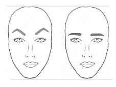 مدل و شکل ابرو با توجه به فرم و شکل صورت