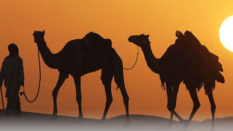 راهنمای سفر به دبی و امارات و مکان های دیدنی این شهر