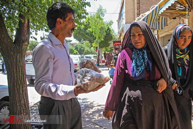 خوردن نوعی جیرجیرک خاص در ایران! + تصاویر