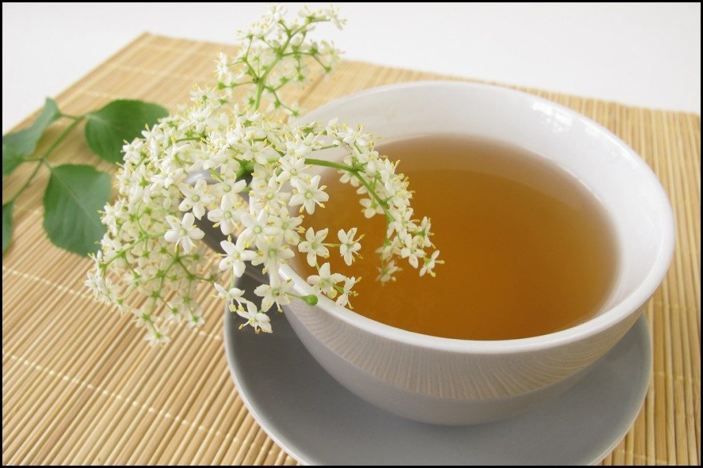 چای سفید باعث لاغری و کاهش وزن می شود؟ 1