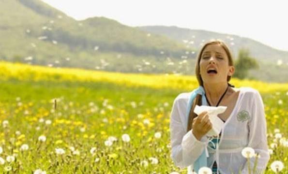 آلرژی در تابستان