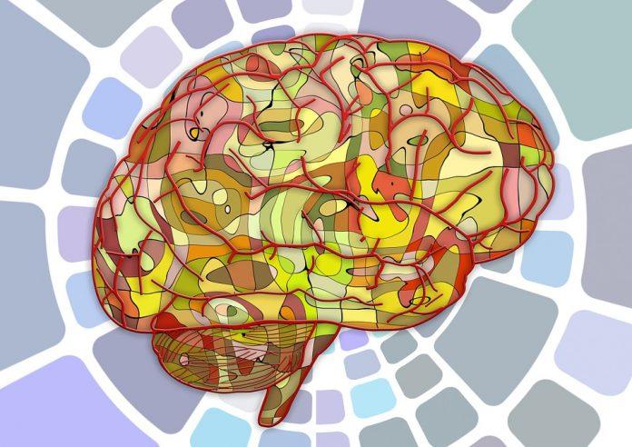 فواید حل پازل برای مغز و حافظه 1