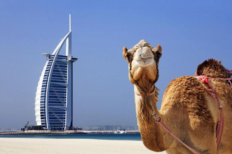 چه موقع از سال به دبی سفر کنیم؟