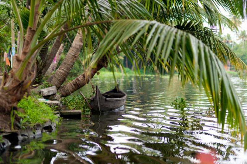 کرالا در جنوب غربی هند (Kerala, India)