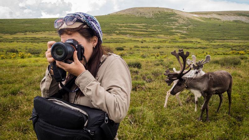دوربین عکاسی سفر