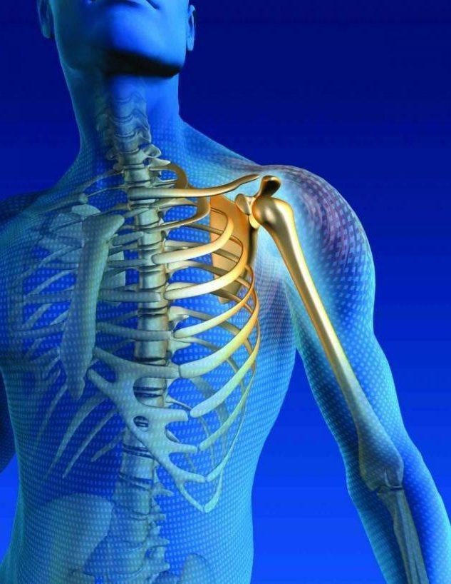 استخوان محکم استخوان قوی