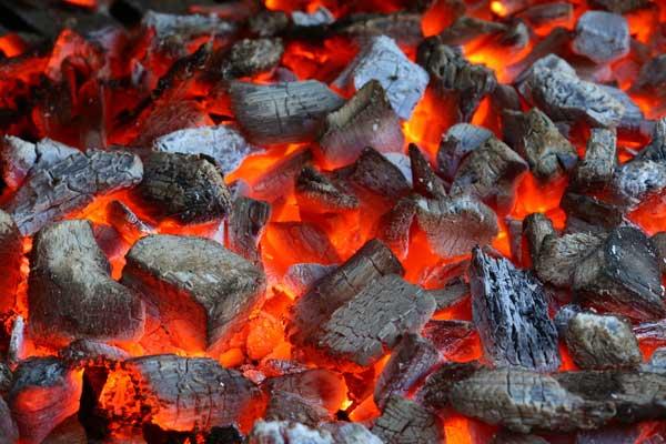 زغال کبابی زغال قلیان