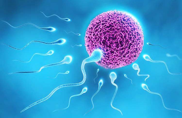 بارداری با پیشاب منی