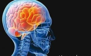 تاثیر قلیان بر مغز