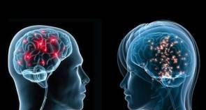 ساختار ذهن زن و مرد