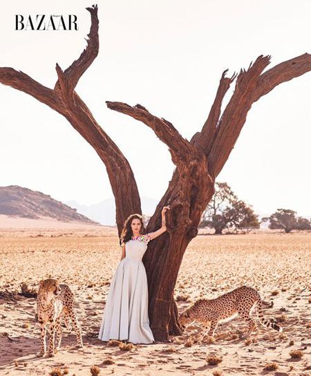 عکس های جذاب آنجلینا جولی