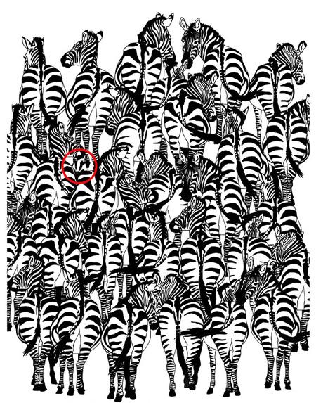 تصاویر پنهان شده در عکس ها را پیدا کنید