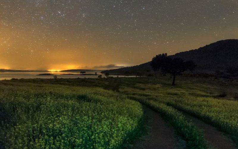 آسمان شب, ستارگان زیبا