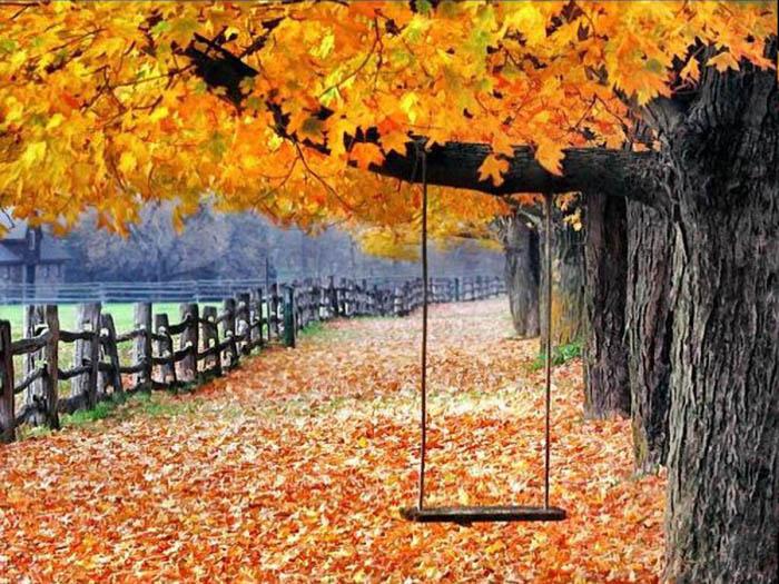 عکس نوشته های پاییزی و تصاویر رمانتیک عاشقانه پاییز | عکس <strong>پروفایل</strong> پاییزی