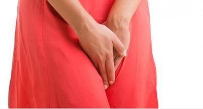 ناحیه تناسلی زن, اندام تناسلی, واژن