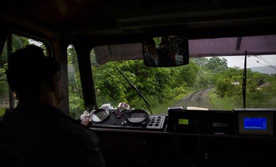 سفر با قطار از وسط جنگل های سرسبز به شمال