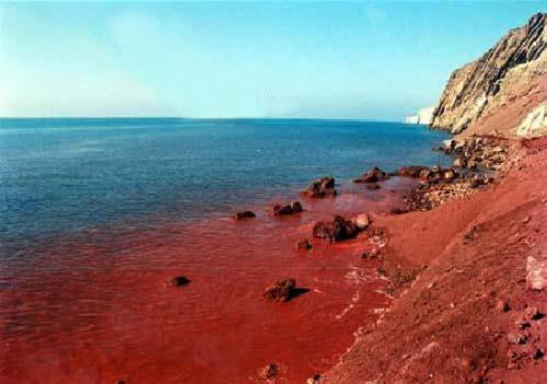 جزیره هرمز یاقوت خلیج فارس