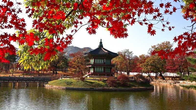 چگونه ویزای کره جنوبی بگیریم؟