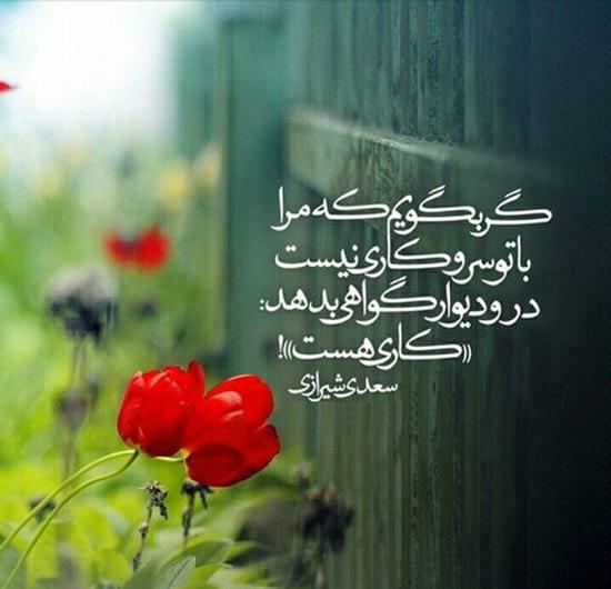 اشعار عاشقانه سعدی؛ زیباترین سعرهای عاشقانه و رمانتیک سعدی
