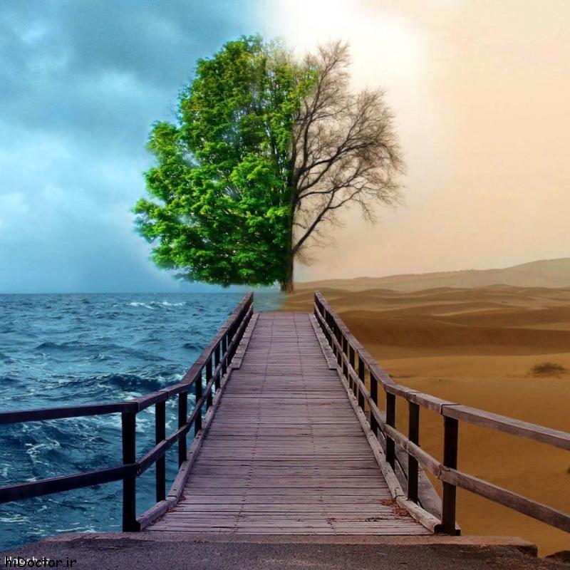 Photo of شعر زیبا در مورد زندگی و جمله های کوتاه با معنی در مورد زندگی