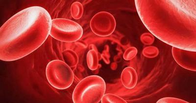 تصفیه کننده خون