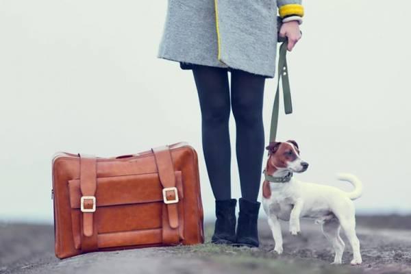 روش بستن چمدان